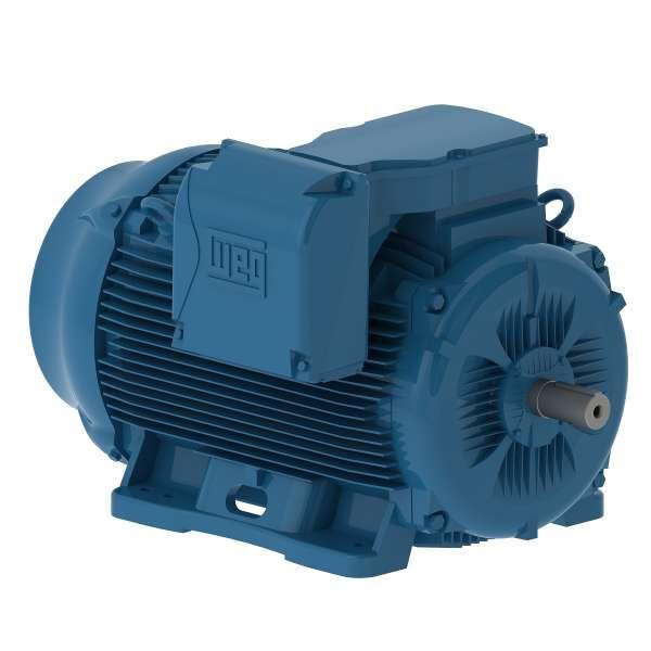 Motor electrico WEG trifasico 30012ET3EM449TW 300 Hp 1200 RPM 447/9T