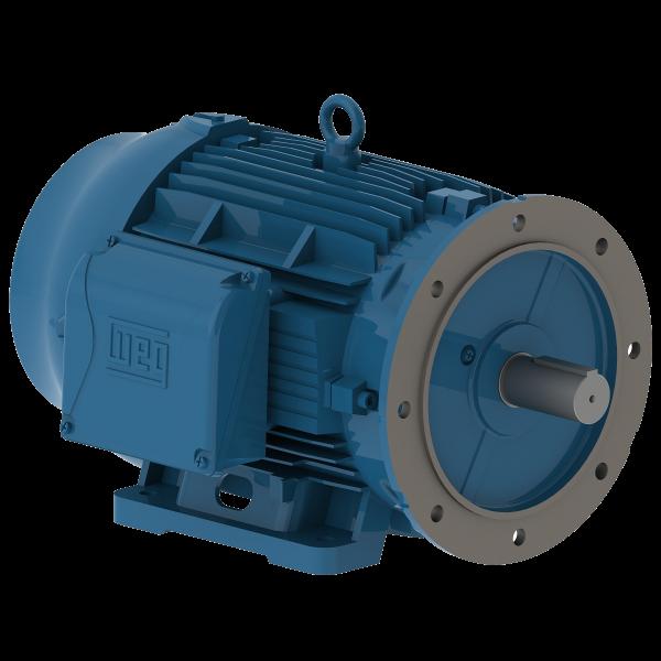 Motor electrico WEG trifasico 01009ET3EM284TDW 10 Hp 900 RPM 284/6TD
